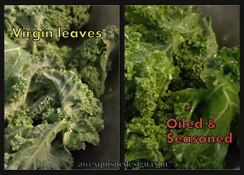 Kale leaves pre-oiled & seasoned and oiled & seasoned
